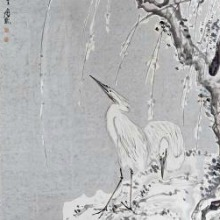 WHITE EGRETS ON A BANK OF SNOW COVERED WILLOWS