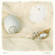 Judy Mandolf - Shells II