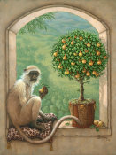 Janet Kruskamp - Monkey & Pear Tree