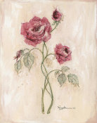 Peggy Abrams - Miniature Rose II