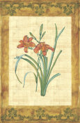 Sabine - Key West Lily I