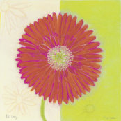 Dona Turner - Red Daisy