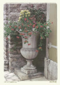 Judy Mandolf - Urn With Geraniums