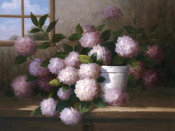 Welby - Hydrangea Blossoms l