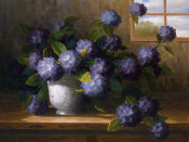 Welby - Hydrangea Blossoms II