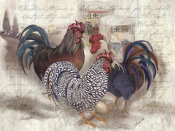 Alma Lee - Rooster Trinity