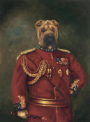 Massy - Major-General Woof