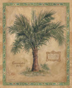 Betty Whiteaker - Palm Carpoxylon