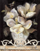 Shari White - Magnolias Of Nice
