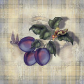 Alma Lee - Tartan Fruit-Plum