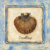 Sylvan Lake Collections - Scallop