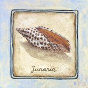 Sylvan Lake Collections - Junania