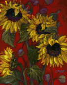 Shari White - Sunflowers II