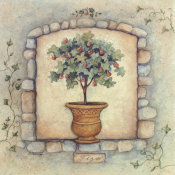 Susan Winget - Figs Topiary