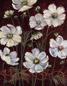 Shari White - California Cosmos