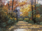 Diane Romanello - Autumn Road