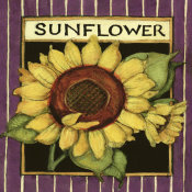 Susan Winget - Sunflower Seed Packet