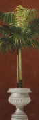 Welby - Potted Palm Red II