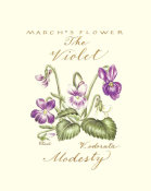 Constance Lael - March's Flower, The Violet