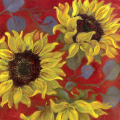 Shari White - Sunflower II