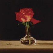 Patrick Farrell - Red Rose
