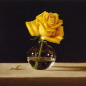 Patrick Farrell - Yellow Rose