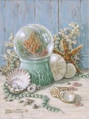 Janet Kruskamp - Sea Shell Collection IV