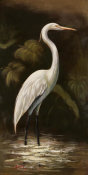 Smith - Brown Egret