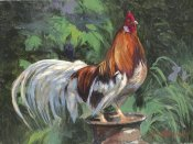 N. Mirkovich - Red And White Rooster