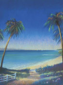 Fred Fieber - Tropical Path II