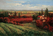 Matt Thomas - Tuscan Fields of Red