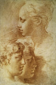 F. Parmigianino - Three Profiles