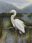 Kilian - Morning Egret