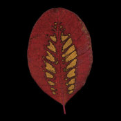 June Hunter - Smokebush Leaf on Black