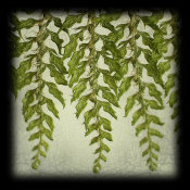 June Hunter - Tassle Fern I