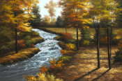 Diane Romanello - Roaring Brook