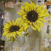 TIMO - Sunflowers