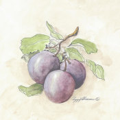 Peggy Abrams - Plums