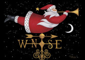 Stephanie Stouffer - Santa Weather Vane
