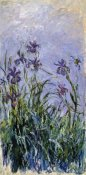 Claude Monet - Iris mauves