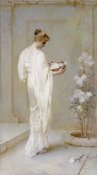 Henry Thomas Schafer - Divinely Fair
