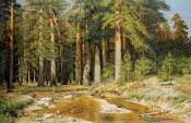 Ivan Ivanovich Shishkin - The Mast-Tree Grove, Study
