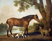 George Stubbs - A Bay Hunter, a Springer Spaniel and a Sussex Spaniel, 1782