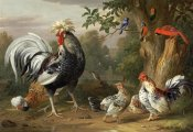 Jacob Bogdany - Poultry and Other Birds In The Garden of a Mansion