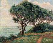 Armand Guillaumin - La Pointe De La Pierriere, St. Palais