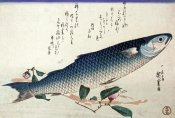 Hiroshige - A Design From a Large Fish Series