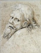 Albrecht Durer - The Head of a Bearded Man