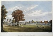 J. Powell - Clapham Common