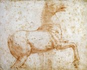 Raphael - Study of One of The Quirinal Marble Horses