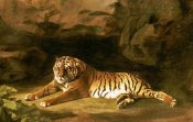 George Stubbs - Portrait of The Royal Tiger